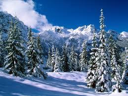 shiatsu_bordeaux_hiver
